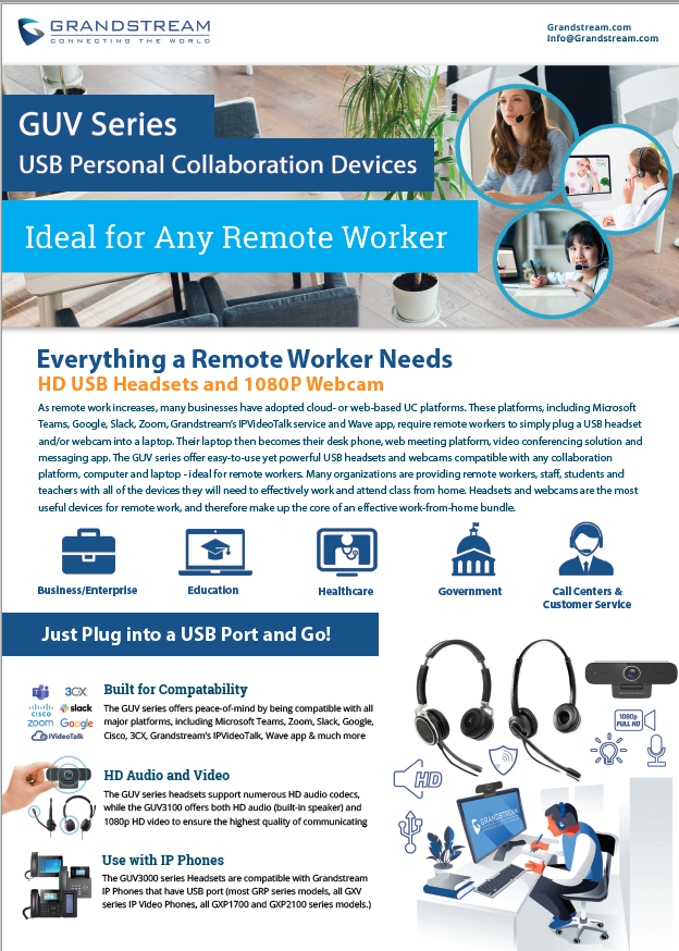 GUV Remote Worker Flyer